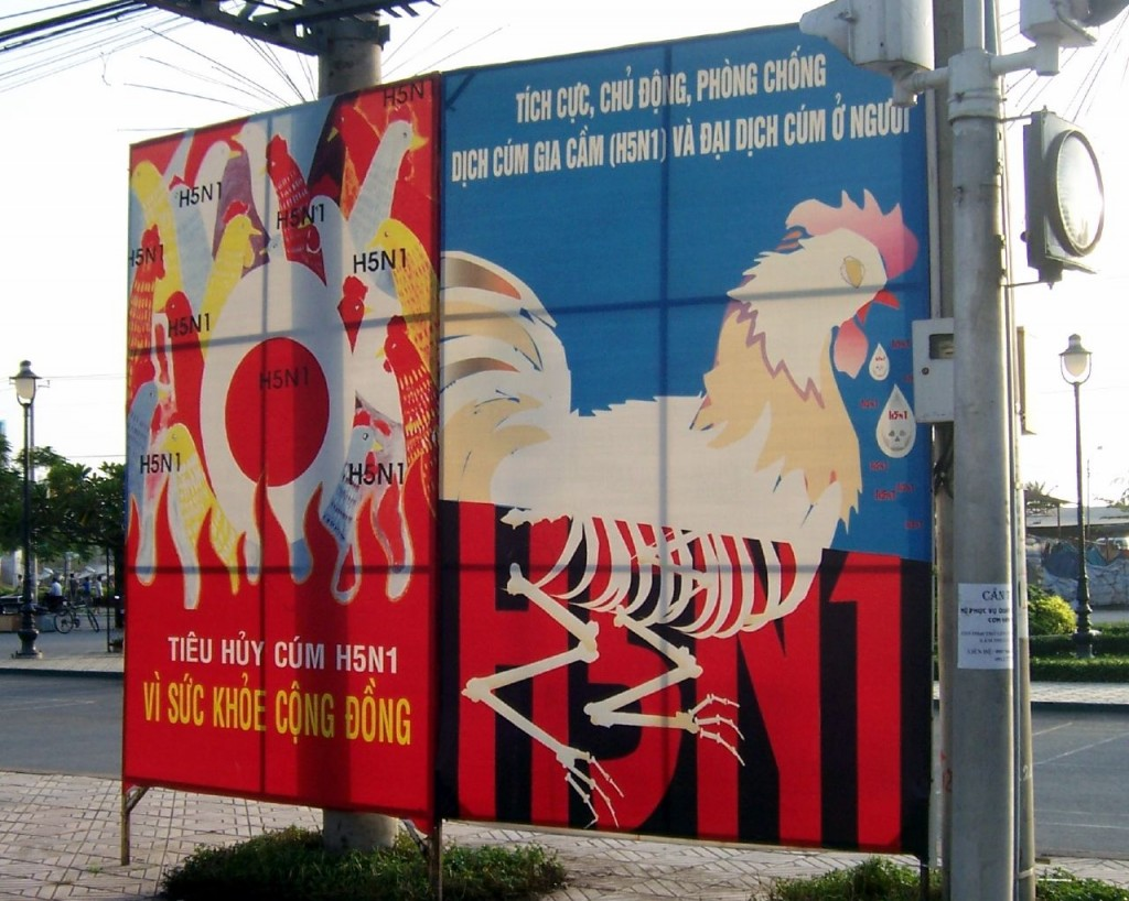 A Vietnamese poster warning about H5N1 (Bird Flu), 2007. Photo by: Joe Gatling. License under: Attribution 2.0 Generic