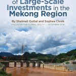 Investments in the Mekong